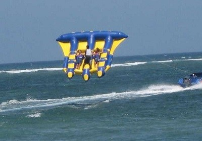 Flying fish / net