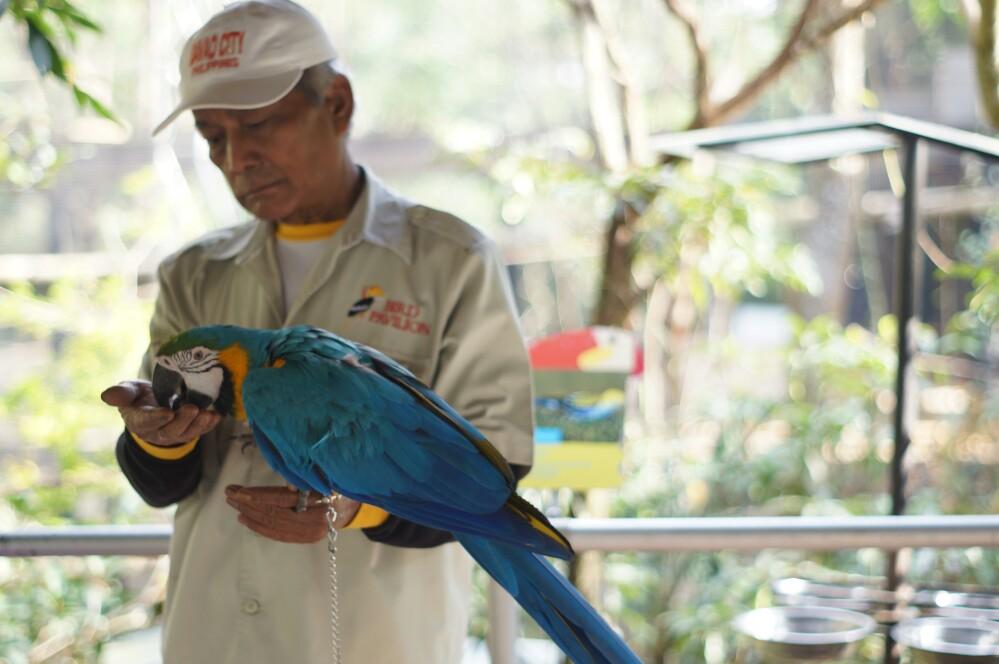 Bird & Bormelia Pavilion / Destinasi Bandung
