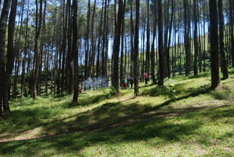 Segarnya Alam Wanawisata Batu Kuda Di Kaki Gunung Manglayang